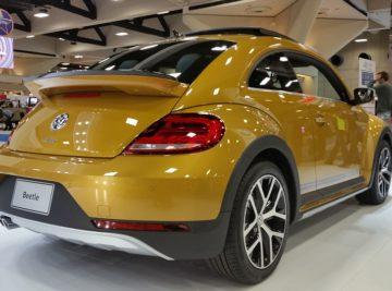 beetle-1548082_960_720